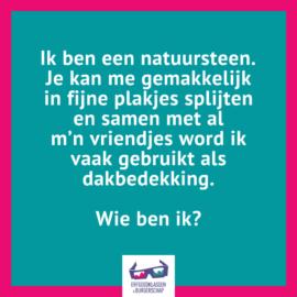 devinette 13 NL